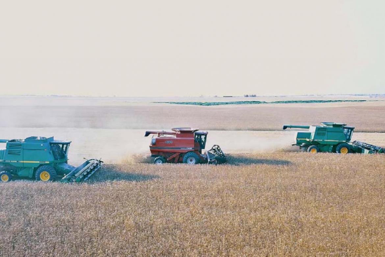 2021 Harvest in full swing; yields high
